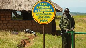 Helping protect the Upemba national park